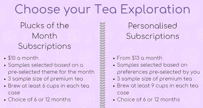 tea-exploration-2