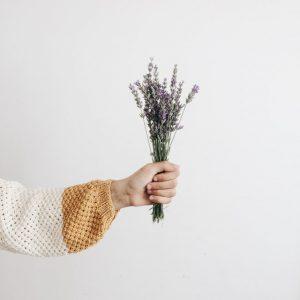 blog-lavender-2